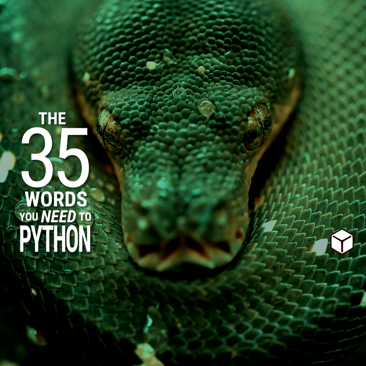 The 35 Words You Need to Python | yawpitchroll